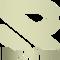 raiver footer logo light decreased